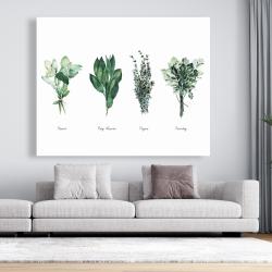 Canvas 48 x 60 - Fine herbs