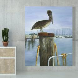 Canvas 48 x 60 - Pelican