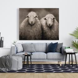 Canvas 48 x 60 - Sheep sepia