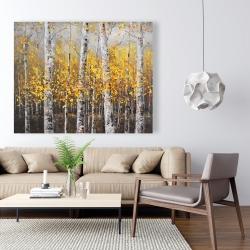 Canvas 48 x 60 - Sunny birch trees