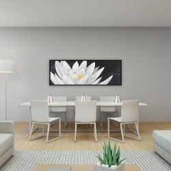 Framed 16 x 48 - Lotus flower with reflection
