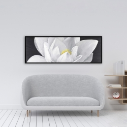 Framed 16 x 48 - Overhead view of a lotus flower