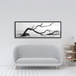 Framed 16 x 48 - Dead tree in the middle of water