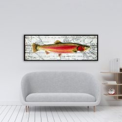 Framed 16 x 48 - Pink trout on a map