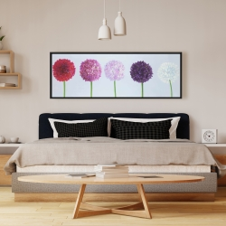 Framed 16 x 48 - Dahlia pomponowa