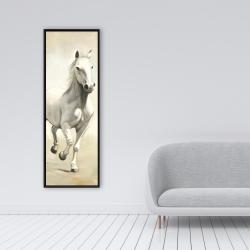 Framed 16 x 48 - Gallant white horse