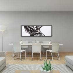 Framed 16 x 48 - Roe deer plume