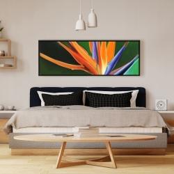 Framed 16 x 48 - Bird of paradise flower
