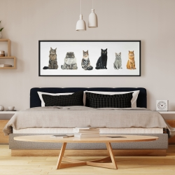 Framed 16 x 48 - Six cats lined up