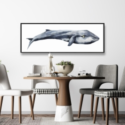 Framed 16 x 48 - Watercolor whale