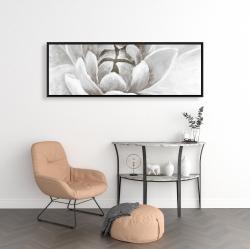 Framed 16 x 48 - Delicate white chrysanthemum