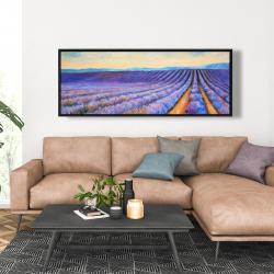 Framed 20 x 60 - Lavender fields