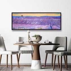 Framed 20 x 60 - Landscape of a field of lavender