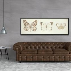 Framed 20 x 60 - Sepia butterflies