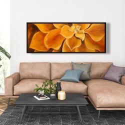 Framed 20 x 60 - Orange flower closeup