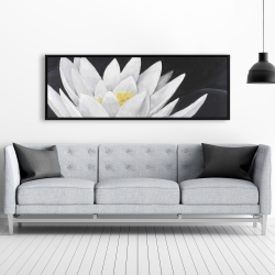 Framed 20 x 60 - Lotus flower with reflection
