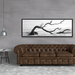 Framed 20 x 60 - Dead tree in the middle of water