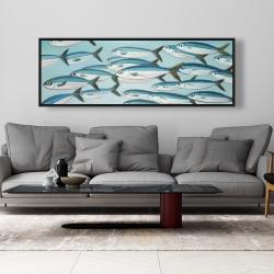 Framed 20 x 60 - Small fish of caesio caerulaurea