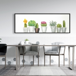 Framed 20 x 60 - Mini cactus and succulents