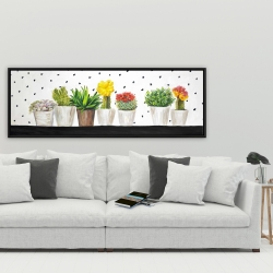 Framed 20 x 60 - Small cactus and succulents
