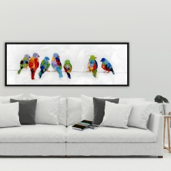 Framed 20 x 60 - Colorful birds on a wire