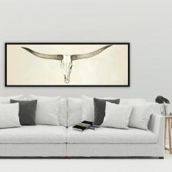 Framed 20 x 60 - Longhorn cattle skull