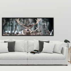 Framed 20 x 60 - Stags