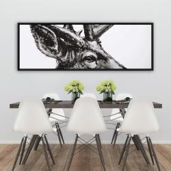 Framed 20 x 60 - Roe deer plume