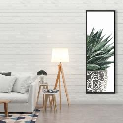Framed 20 x 60 - Zebra plant succulent