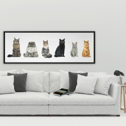 Framed 20 x 60 - Six cats lined up