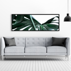 Framed 20 x 60 - Monstera deliciosa