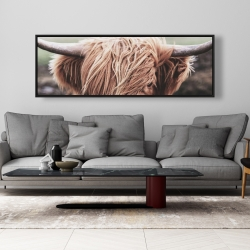 Framed 20 x 60 - Desaturated highland cow