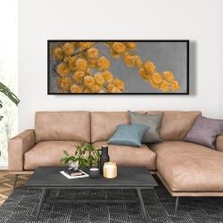 Framed 20 x 60 - Golden wattle plant