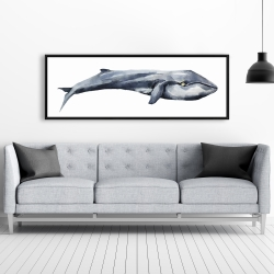Framed 20 x 60 - Watercolor whale