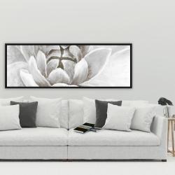 Framed 20 x 60 - Delicate white chrysanthemum