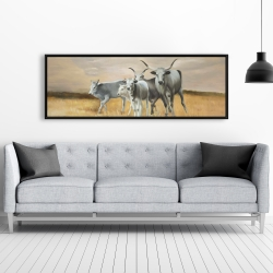 Framed 20 x 60 - Nguni breeding
