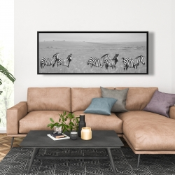 Framed 20 x 60 - Zebras in the savannah