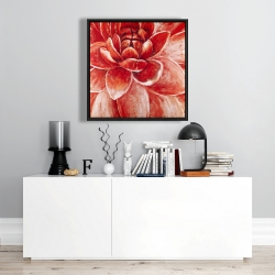Framed 24 x 24 - Red chrysanthemum