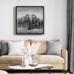 Framed 24 x 24 - Herd of elephants