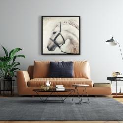 Framed 24 x 24 - Darius the white horse
