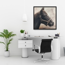Framed 24 x 24 - Gallopin the brown horse