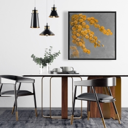 Framed 24 x 24 - Golden wattle plant