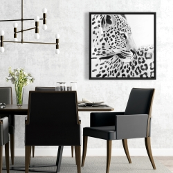 Framed 24 x 24 - Beautiful leopard