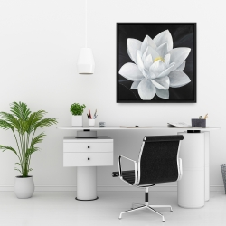 Framed 24 x 24 - Overhead view of a lotus flower