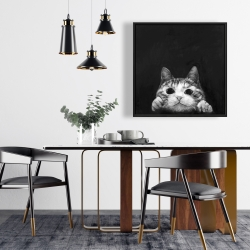 Framed 24 x 24 - Curious cat