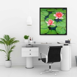 Framed 24 x 24 - Lotus flowers in a swamp