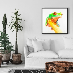Framed 24 x 24 - Curious red eyed frog