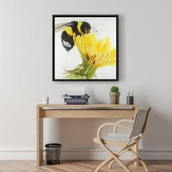 Framed 24 x 24 - Little bumblebee on a dandelion