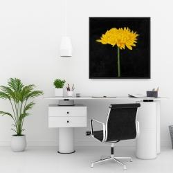 Framed 24 x 24 - Chrysanthemum