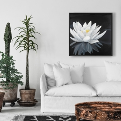 Framed 24 x 24 - Lotus flower with reflection